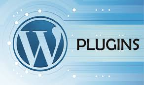 Plug ins to make your website standout in the crowd